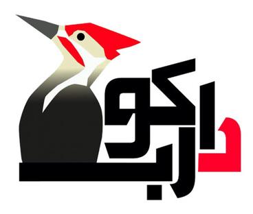 طراحی وبسایت مقرون به صرفه در ایران توسط شرکت دارکوب