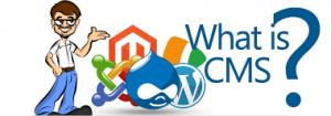 بهترین سیستم مدیریت محتوا برای طراحی سایت چیست